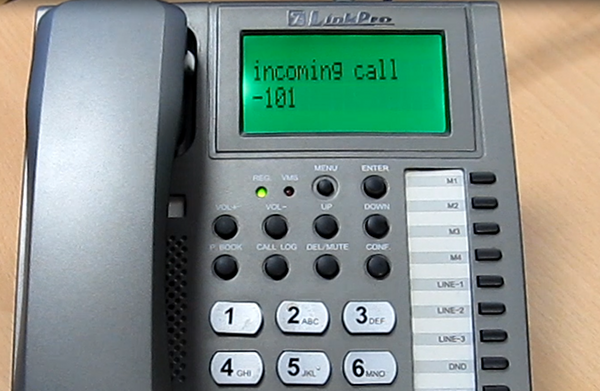 incoming call from the demo application